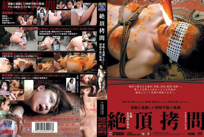 RBD-098 - Climax T*****e! No Longer Sane Pleasured Beyond Comprehension Ayumi Hasegawa bdsm featured actress training enema